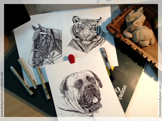 Pen and Ink Portraits - Horse, Bengal Tiger, and Mastiff - Dog and Wildlife portraits by Shafali on her desk.