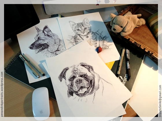 Pen and Ink Portraits - German Shepherd, Kitten, and Boxer - Dogs and Cats pet portraits by Shafali on her desk.