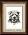 A Dapper Dog – The CairnTerrier