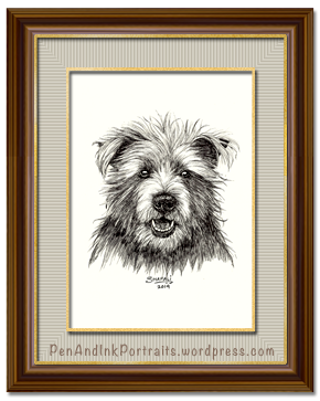 Portrait of Cairn Terrier dog done in pen and ink by pet portrait artist Shafali - Cats, Kittens, Dogs, Pups and Wildlife drawings, sketches, art.