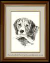 The Beagle – An IncorrigibleSniffaholic!