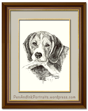 Portrait of Beagle done in pen and ink by pet portrait artist Shafali - Cats, Kittens, Dogs, Pups and Wildlife drawings, sketches, art.