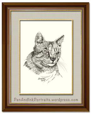 Portrait of Short-haired tabby cat done in pen and ink by pet portrait artist Shafali - Cats, Kittens, Dogs, Pups and Wildlife drawings, sketches, art.