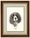 The Spirited Springer Spaniel