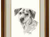 Portrait of the Super-awesome Pup – The Pet Portrait Artist gets the Commission of her Dreams.