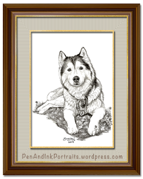 Pet Portrait of Khyra, the Siberian Husky who is her mom's darling.