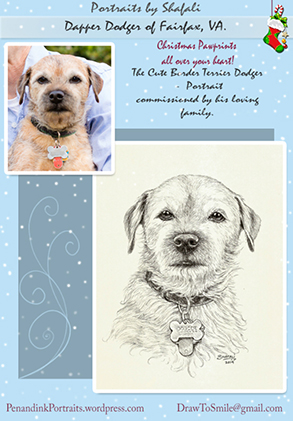 Pet Portraits from Photographs - Dodger - a cute Border Terrier from Fairfax, Virginia - A Pen and Ink portrait by Shafali.