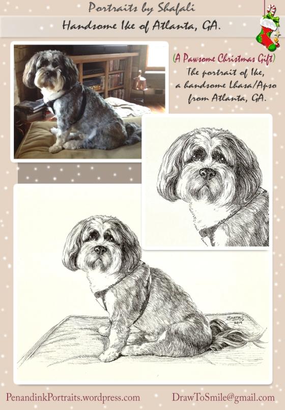 Pet Portrait - Lhasa Apso Ike from Atlanta Georgia.