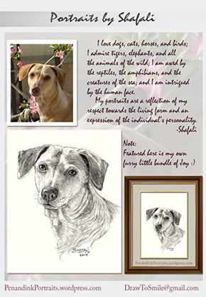 Pet Portraits from Photographs - A Pen and Ink portrait of the Artist's dog - by Shafali.